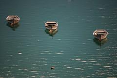 Together - Lago di Santa Croce (Belluno) photo by Carmelo61 PhotoPassion Thanks