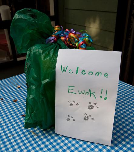 Welcome Ewok