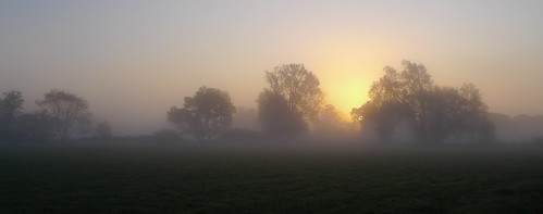 More Morning Mist