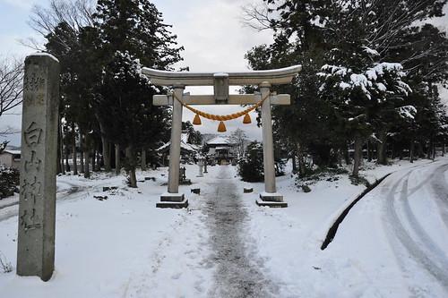近所の白山神社