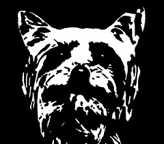 Yorkshire Terrier Black & White Stencil Dog Art Print photo by Pupaya