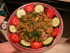 Curried ground turkey stroganoff