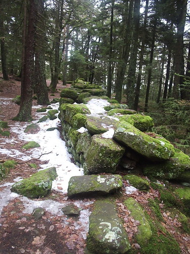 Pagan Wall in the Vosges 2006