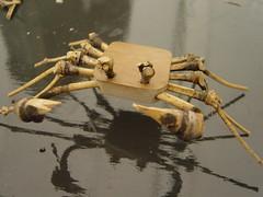 >Bamboo Crab
