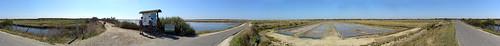 Les marais de l'Ile de Ré