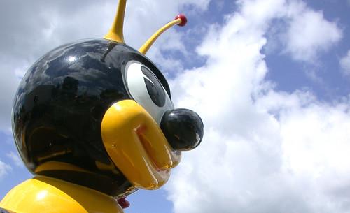 Buzz Buzz 3