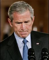 Bush thinking