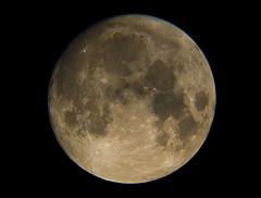Luna CRW_3576