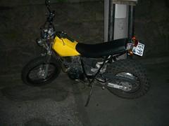 IMGP6231.JPG