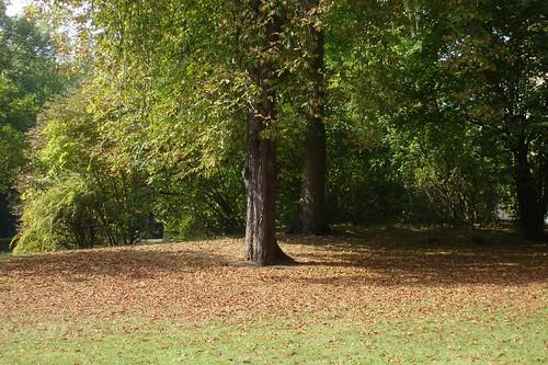 Parc Abbaye de Royaumont 021