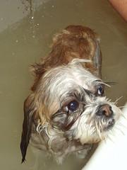 Zoey Bath