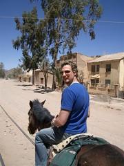 Horseback - 04 - Matt