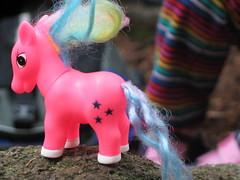 bubble gum pink pony meets nature
