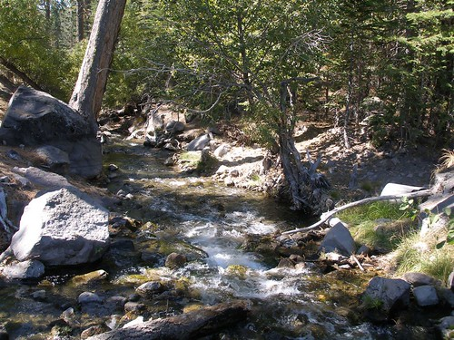 Manzanita Creek