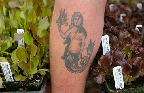 lettuce lady