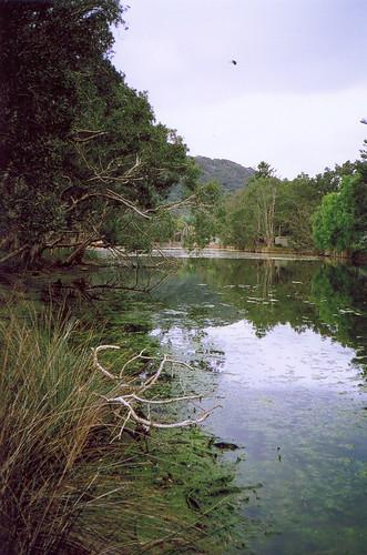 Pearl Beach Lagoon