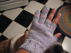 cigar glove