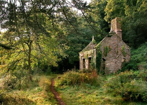 cabane de jardin pas cher