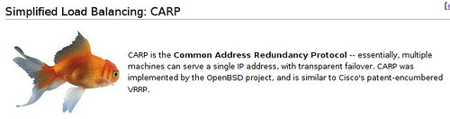 CARP is the Common Address Redundancy Protocol -- essentially, multiple machines can serve a single IP address, with transparent failover. CARP was implemented by the OpenBSD project, and is similar to Cisco's patent-encumbered VRRP.
