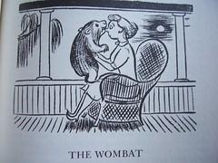 the wombat.