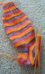 Kool-aid sock as of 10/22