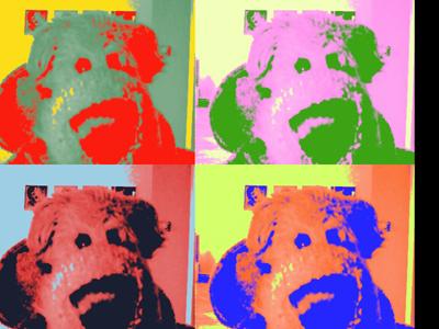 Hugo_Warhol