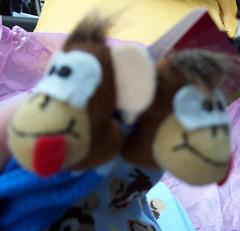 monkeysox4