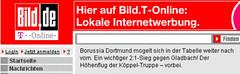 Bild.de-T-Online-Bericht