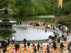 pumpkins around the fountain