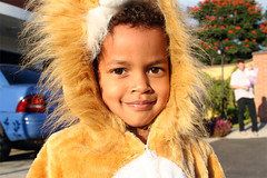 Tamira the Lion