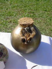 Sue's Special Jug Gourd