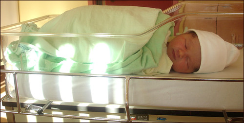 Lily-Soleil (12 hours day old)