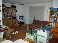 after_livingroom