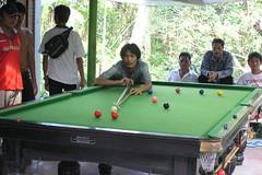 Jungle Snooker