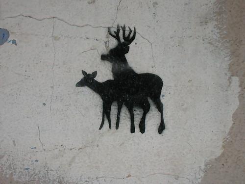 randy deer