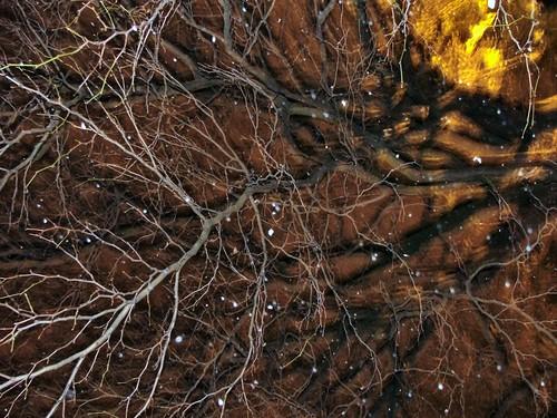 Snowflakes through the tree
