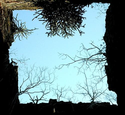 Bassein IN Ruin