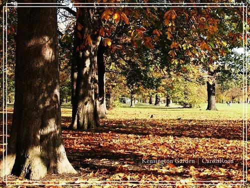 2009-11-07 Kensington Garden 013