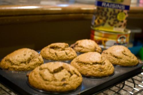 raisin oatmeal muffin
