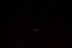 Leonids Meteor slices through Orion photo by Jon E P