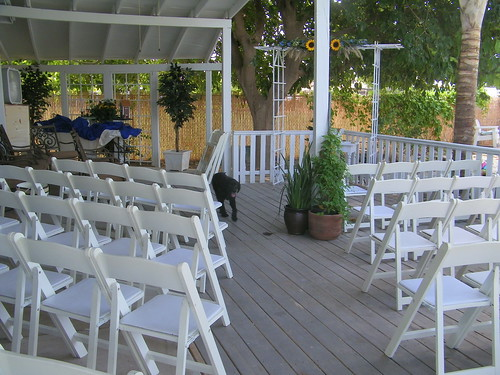 Ambers Wedding 043