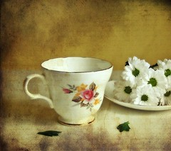 Still Life with Cup & Saucer photo by vesna1962