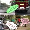 4110287837_befe6a2481_t