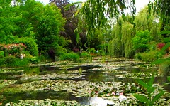 Monet's Garden photo by Ginas Pics