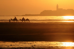 Sunset in Essaouira photo by Brave Lemming