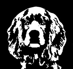 Cocker Spaniel Black & White Stencil Dog Art Print photo by Pupaya