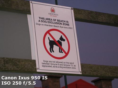 Ixus-Nae-Dogs