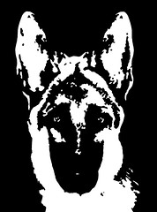 German Shepherd Black & White Stencil Dog Art Print photo by Pupaya
