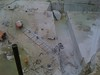 4070649670_84fcabf745_t