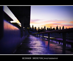 sunset :) photo by Connor Brereton [IM BACKK!]